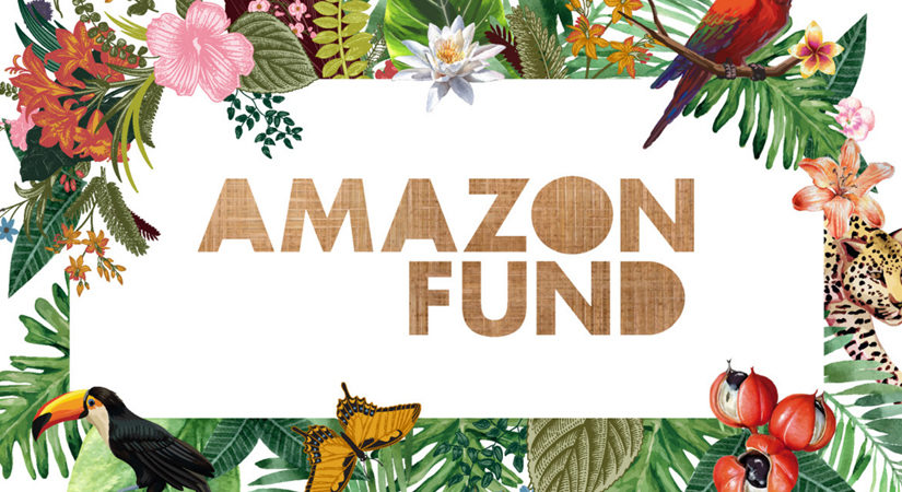 Blockchain technology will track Billion dollar Amazon Fund