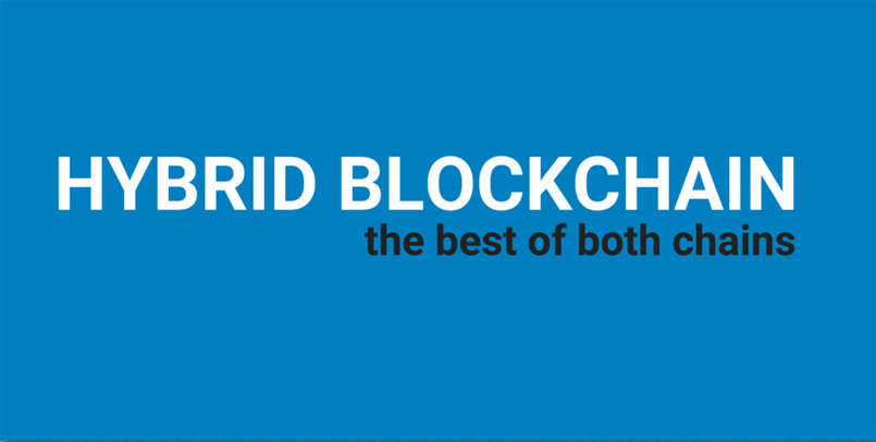 Hybrid Blockchain: The Best of Both Chains